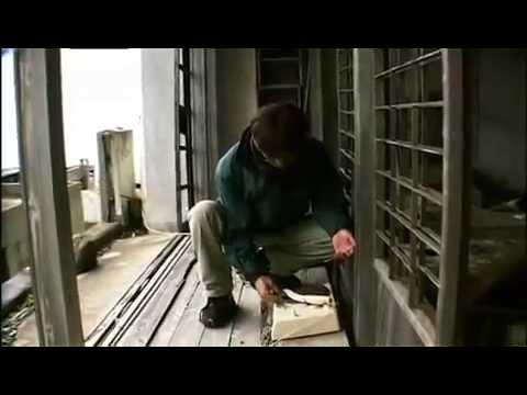 Download Japan Documentary - Hashima The Ghost Island (Gunkanjima)