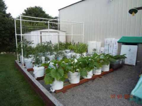 Why The Rain Gutter Grow System Is Like No Other Gardening