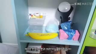 15살의 파충류 사육방 소개영상