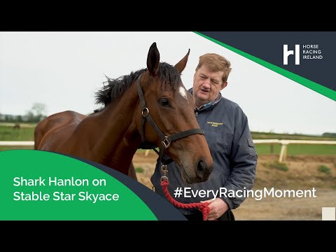 Shark Hanlon on a whirlwind few months with stable star Skyace