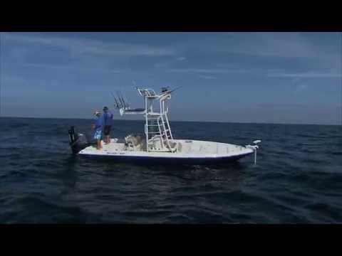 Gag Grouper Fishing Tampa Bay Florida Wrecks