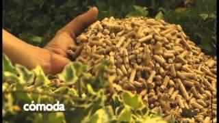 ¿Que es la Biomasa? - Calderas de Biomasa y Estufas de Pellets (Grupo Biosan)