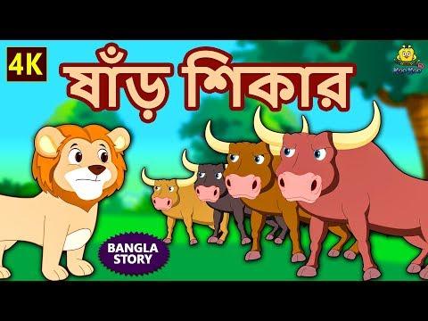 ষাঁড় শিকার - Bulls Hunting | Rupkothar Golpo | Bangla Cartoon | Bengali Fairy Tales | Koo Koo TV thumbnail