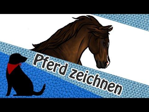 PFERD ZEICHNEN – Tutorial