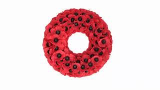 Remembrance Sunday   Revd. Iain Osborne
