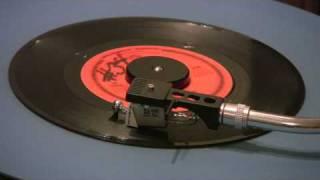 The Tokens - Portrait Of My Love - 45 RPM - Original MONO MIX