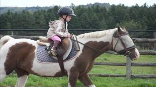 3 year old girl starting a journey into the love of horse riding....