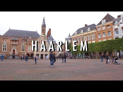 DIT WIL JE ZIEN IN HAARLEM | De Gids #3