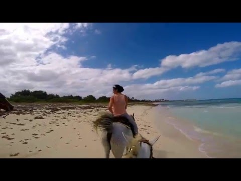 Basic Cowboys in Camaguey
