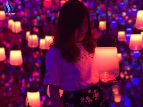 Travel with Nicole Shenzhen : Teamlab🌈【 跟妮可遊深圳: Teamlab🌈】