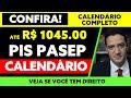 Gambar cover 1045,00 PIS / PASEP | CALENDÁRIO DE PAGAMENTO PIS / PASEP 2020 2021 | ABONO SALARIAL