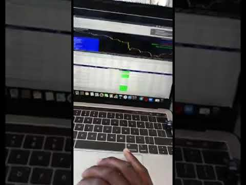 Dusit richly wealthy forex robot