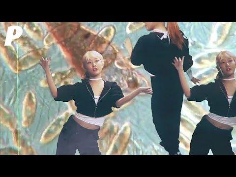 Download MV 향니 hyangni - 탐구생활 /    Mp4 baru