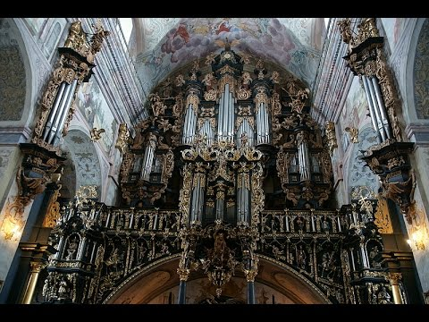 Pachelbel Prelude Fugue and Ciaccona in D minor Great Baroque Organ in Leżajsk 1967 Józef Chwedczuk
