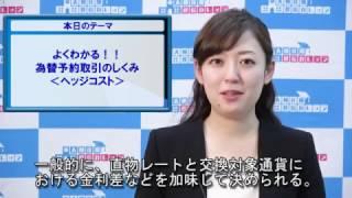 よくわかる!!為替予約取引のしくみ<ヘッジコスト>(2017/03/29)
