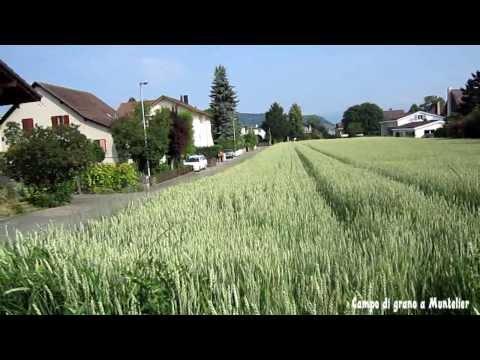 Douce Suisse
