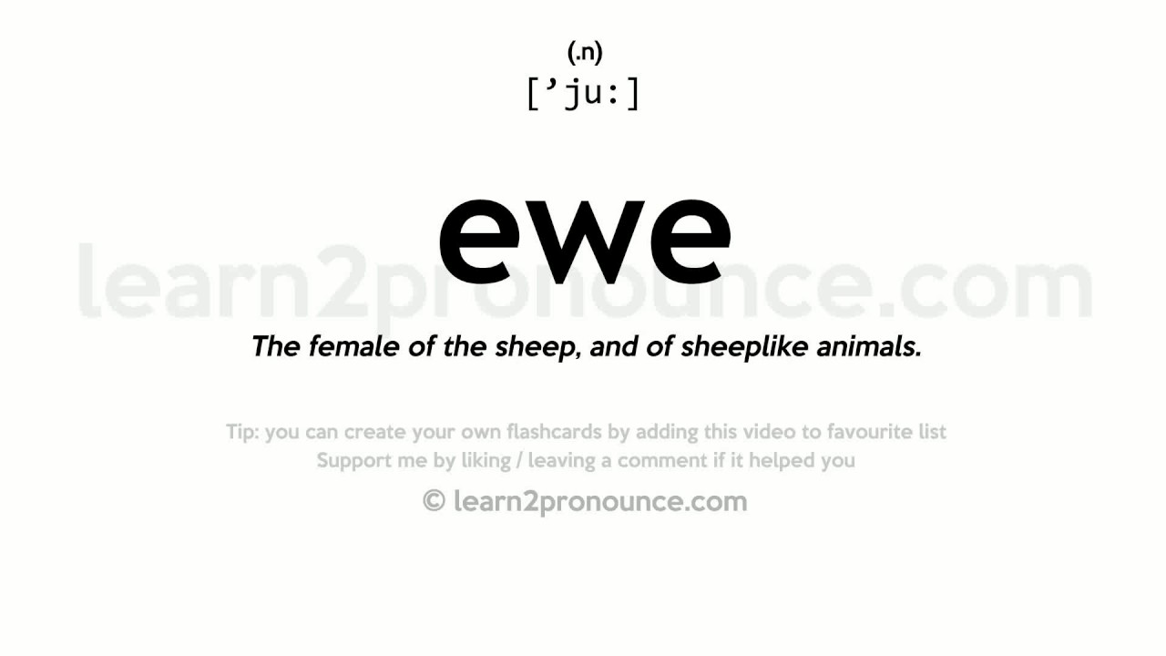 Ewe pronunciation and definition