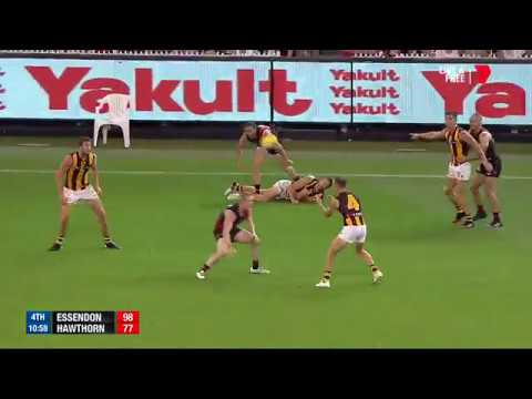 Round 1 AFL - Essendon v Hawthorn Highlights