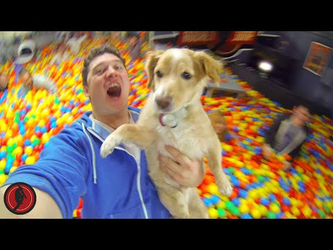 World's Biggest Ball Pit PRANK! (ft. Roman Atwood)