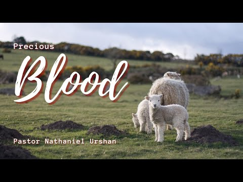Precious Blood – Pastor Nathaniel Urshan