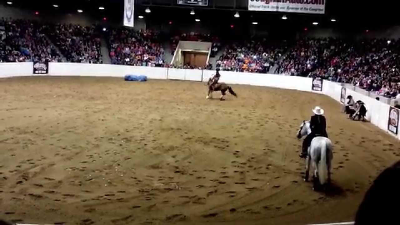 american quarter horse congress 2014 freestyle #4: the lone ranger