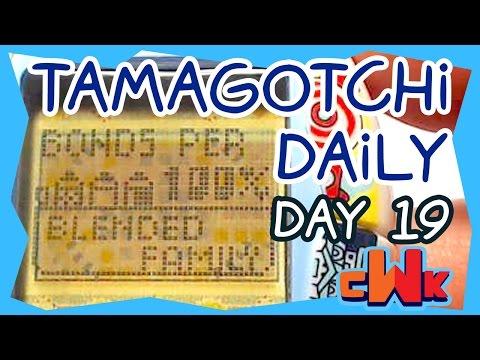 LET'S TAMAGO - 100% BOND (Daily Tamagotchi Diary Day 19) - CWK