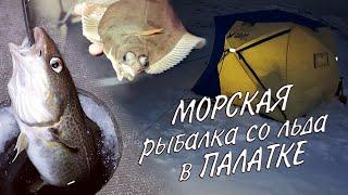 МОРСКАЯ НОЧНАЯ РЫБАЛКА СО ЛЬДА В ПАЛАТКЕ SEA NIGHT FISHING WITH ICE IN A TENT