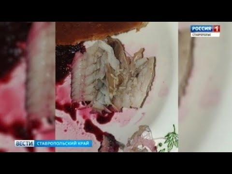 Губернатор поручил проверить кухню в ставропольской больнице