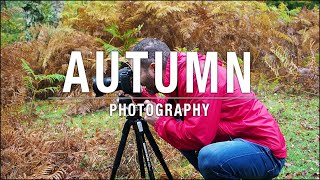 Autumn Photography in Bad Weather!