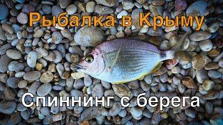 Рыбалка в Крыму. Спиннинг с берега. Черное море 2020