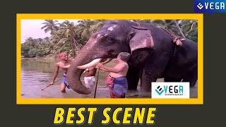 Adoor Bhasi Takes Guruvayur Kesavan for a Bath ||  Guruvayur Kesavan