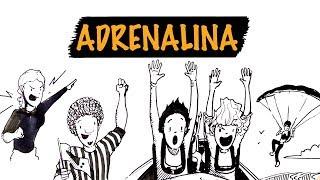 O Que a Adrenalina Faz por Você?   Autoridade Fitness