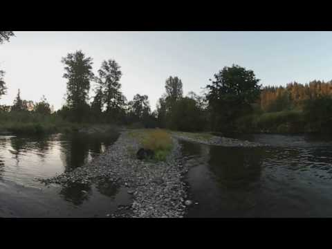 Fly fishing on the Cedar river