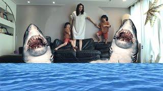집에 상어가 나타났다! 할로윈상어 유령 아기상어 상어송 상어가족 돌고래 baby shark song l shark in my house l shark family song