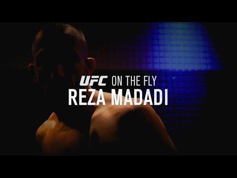 On the Fly: Fight Night London - Reza Madadi