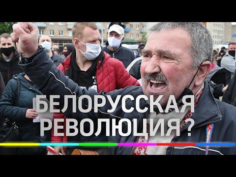 Протесты в Белоруссии - цветная революция? Пикет солидарности - причины