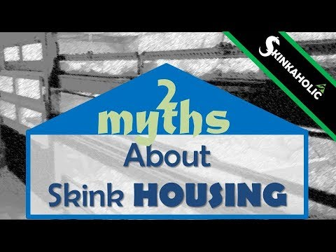 Two Myths About Blue Tongue Skink Caging - Ep. 11