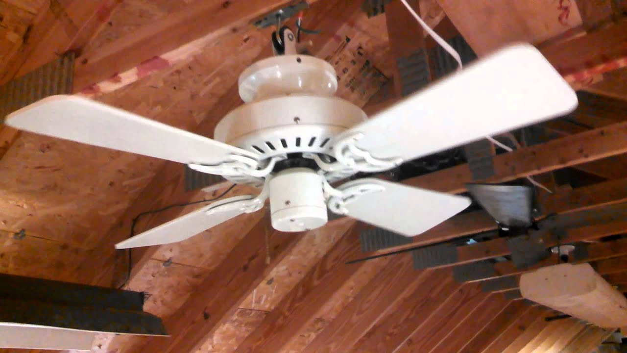 "Hunter Bath & Dressing Room 32"" Ceiling Fan model"