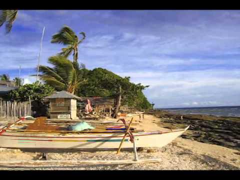 eta Apo island malatapay dumaguete dauin scuba dive saving marine sanctuary