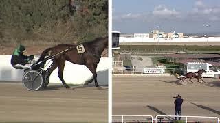 Vidéo de la course PMU GRAN PREMI CONSELL DE MALLORCA