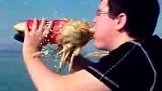 Reacción Coca Cola & Mentos en la Boca de Jony thumbnail