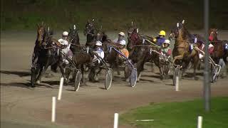 Vidéo de la course PMU PRIX COLORADO BLUE