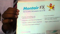 Montair Fx montelukast fexofenadine for allergic rhinits