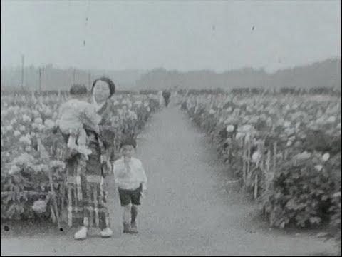 戦前・昭和12年 植物園(大船)など - YouTube