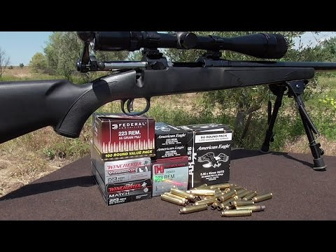 .223 Wal Mart Ammo any Good? -.223 Accuracy Series Part 2