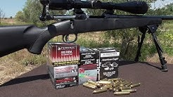 .223 Wal Mart Ammo any Good? - .223 Accuracy Series Part 2