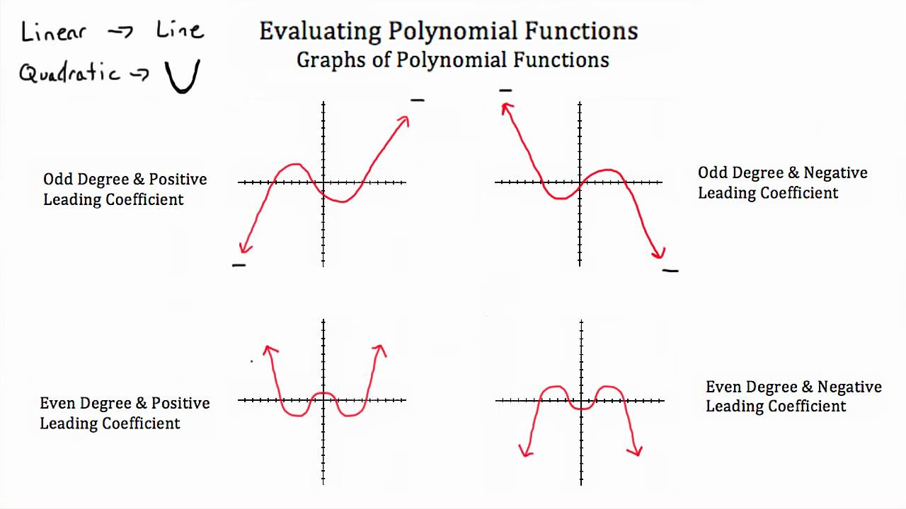 worksheet Graphing Polynomials Worksheet evaluating polynomial functions youtube