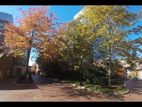 North Eastern University Campus Tour Vlog With GoPro Hero