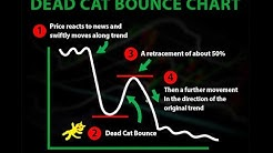 BITCOIN: DON'T GET FOOLED!!! DEAD CAT BOUNCE CHART !!!