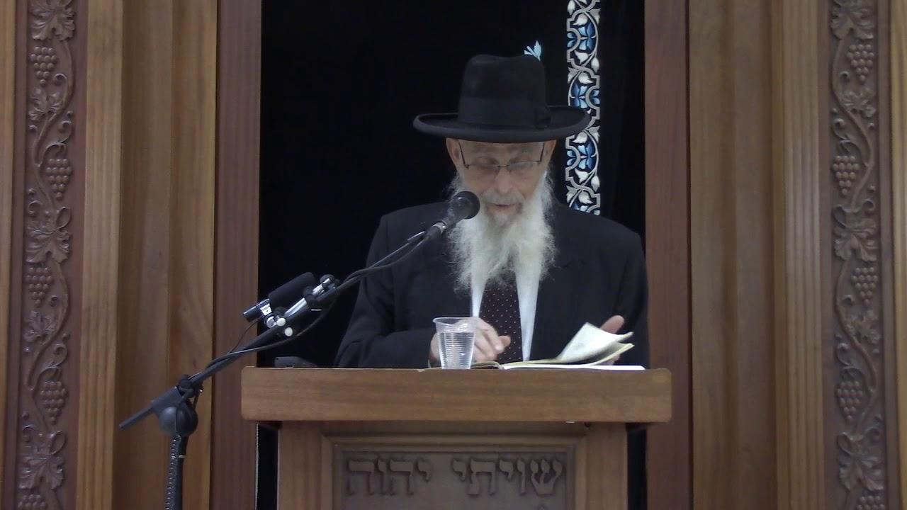 קידושי קטנה - שיעור כללי במסכת קידושין - הרב יעקב אריאל
